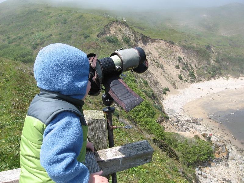 Observing