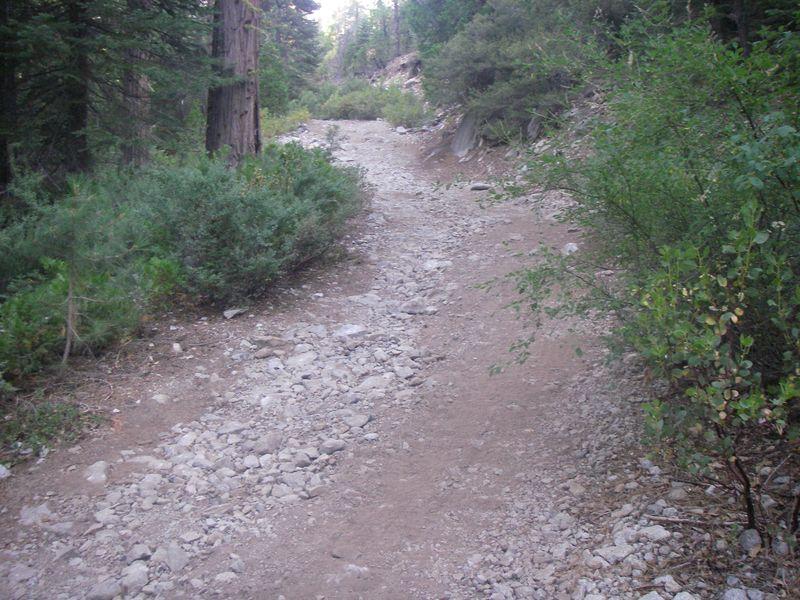 PMD roads pre09