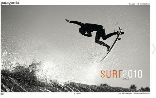 Pat_surf_ecat_f10_4