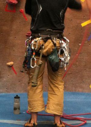 Kc - trad guy harness photo