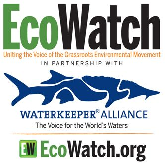 Ecowatch 2