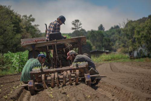 Tractor_crew
