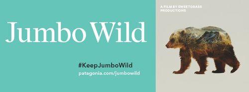 Jumbo_wild_1