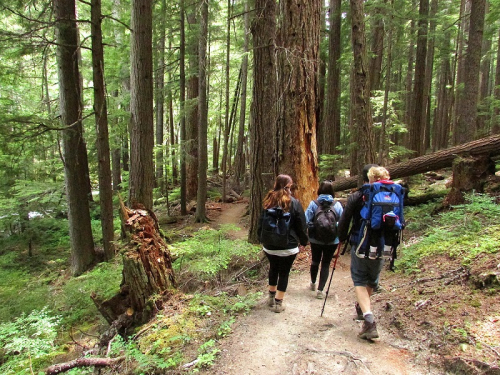 WO_Upper Dungeness Trail_2